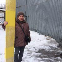 Оцинкованные грядки к Москве и МО покупают в БелТеплица